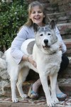Pet Firs Aid Trainer, Denise Fleck