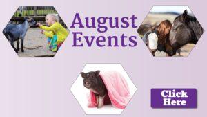 August pet calendar at a glance
