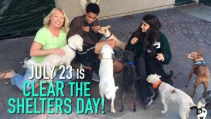 #cleartheshelters