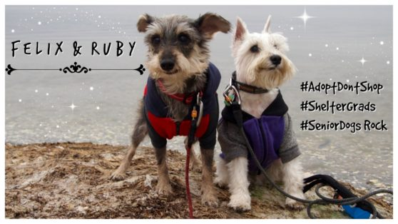 Felix and Ruby Featured