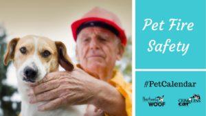 pet calendar fire safety
