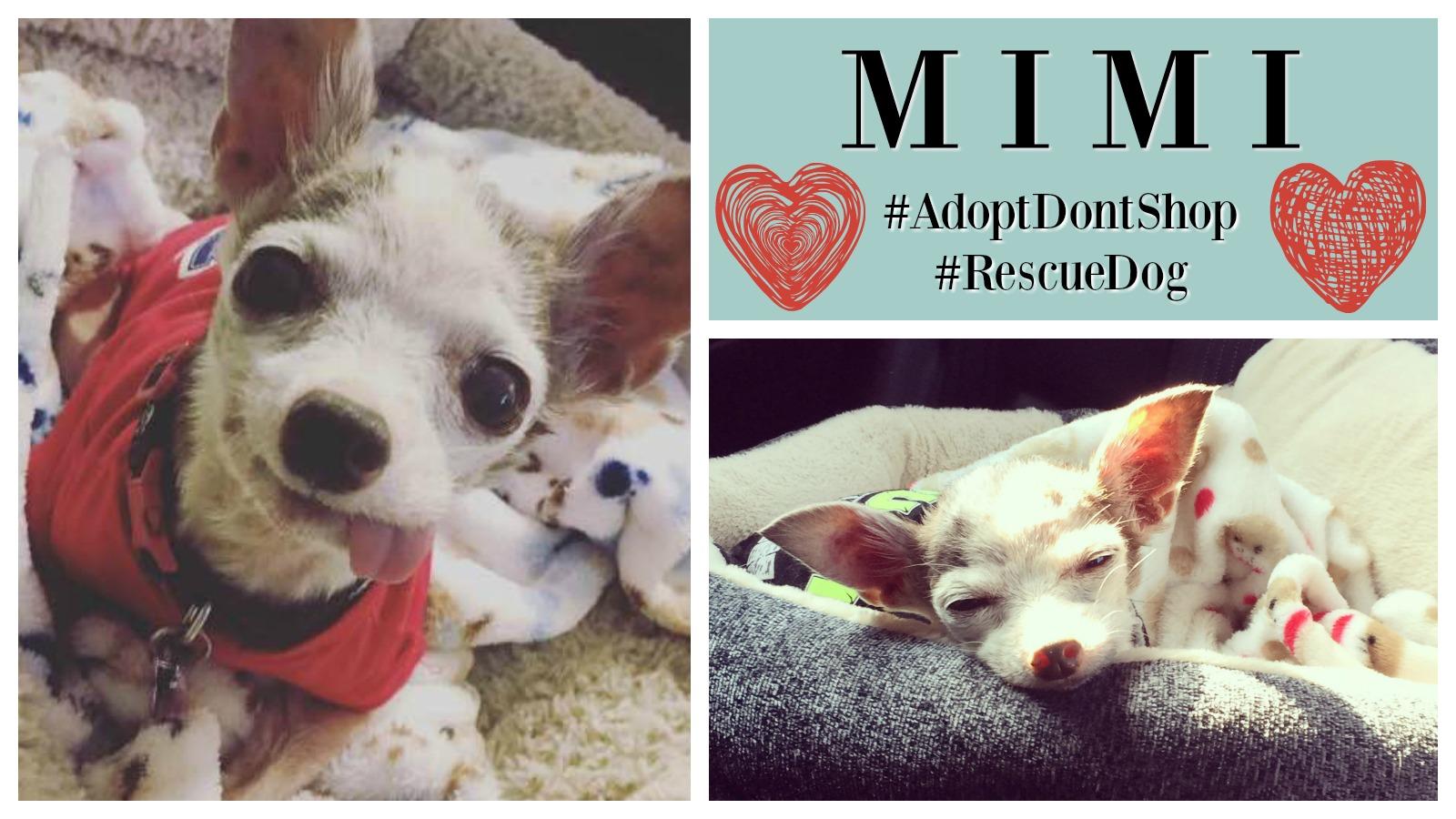 Mimi Featured