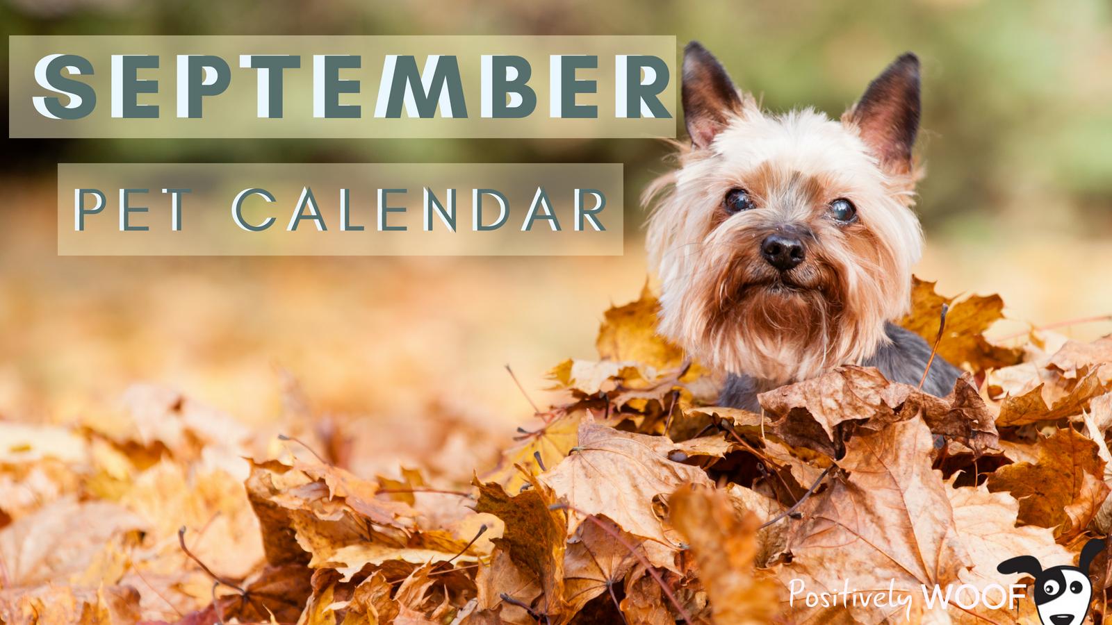 september pet calendar