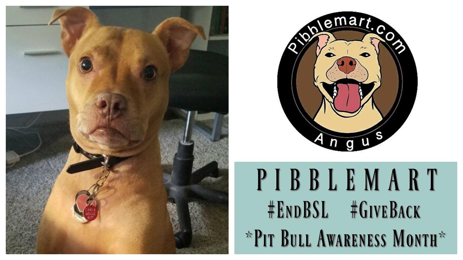 pibblemart-featured