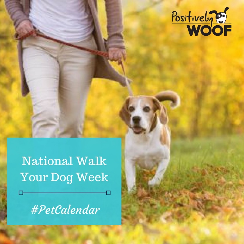 national walk your dog week
