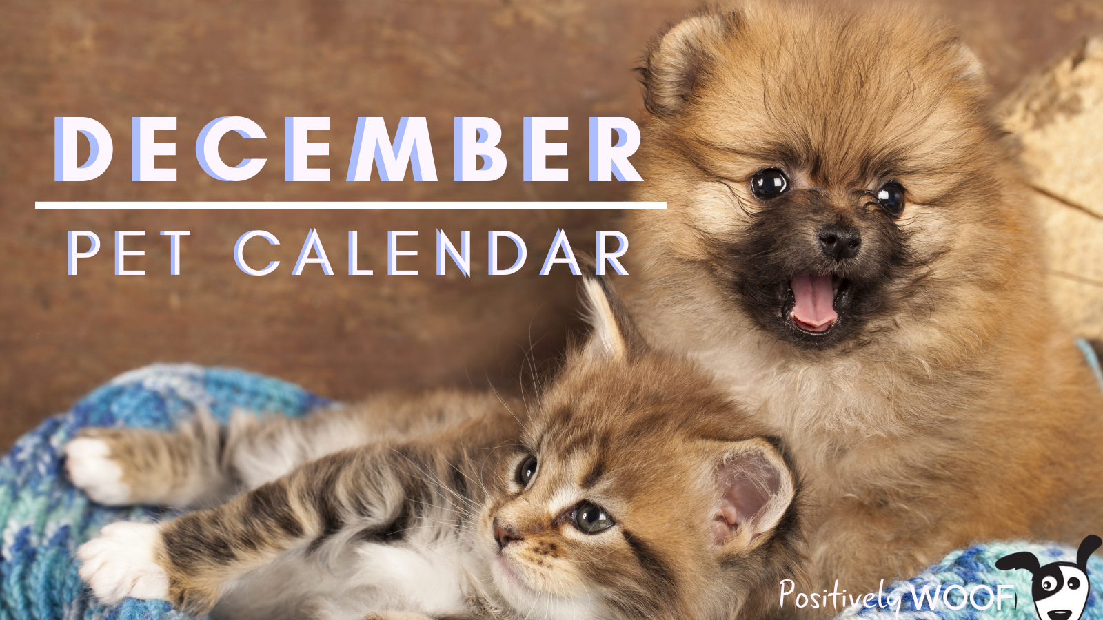 december pet calendar