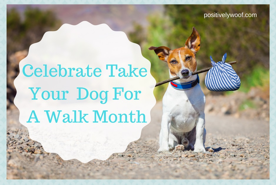 celebrate-take-your-dog-for-a-walk-month