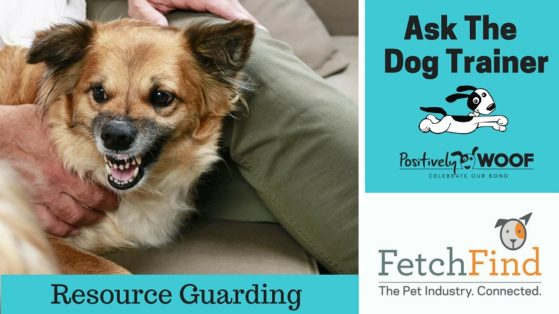 ask the dog trainer resource guarding