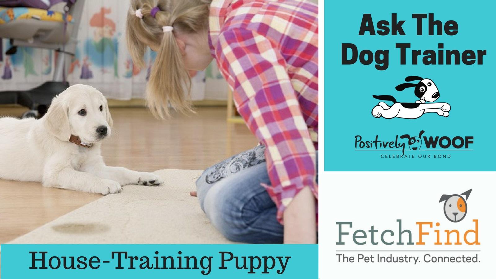 ask the dog training house training