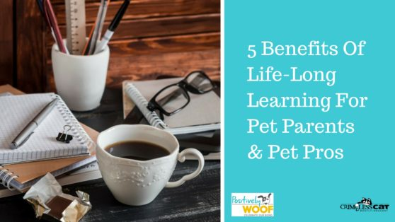 5-benefits-of-life-long-learning