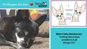 pet blogs we love