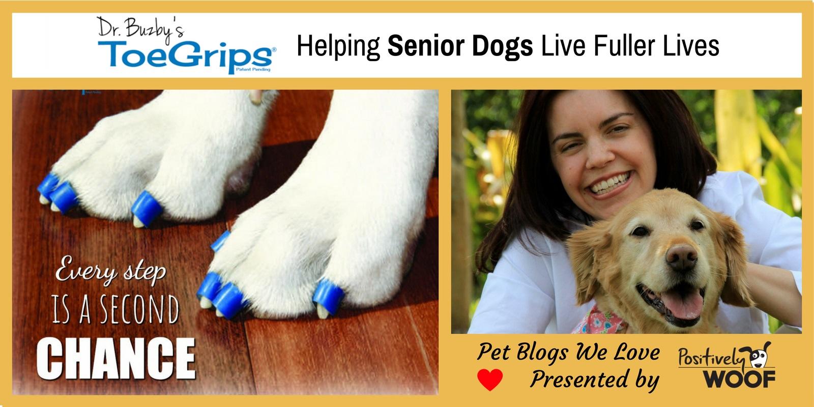 dr buzby pet blogs we love