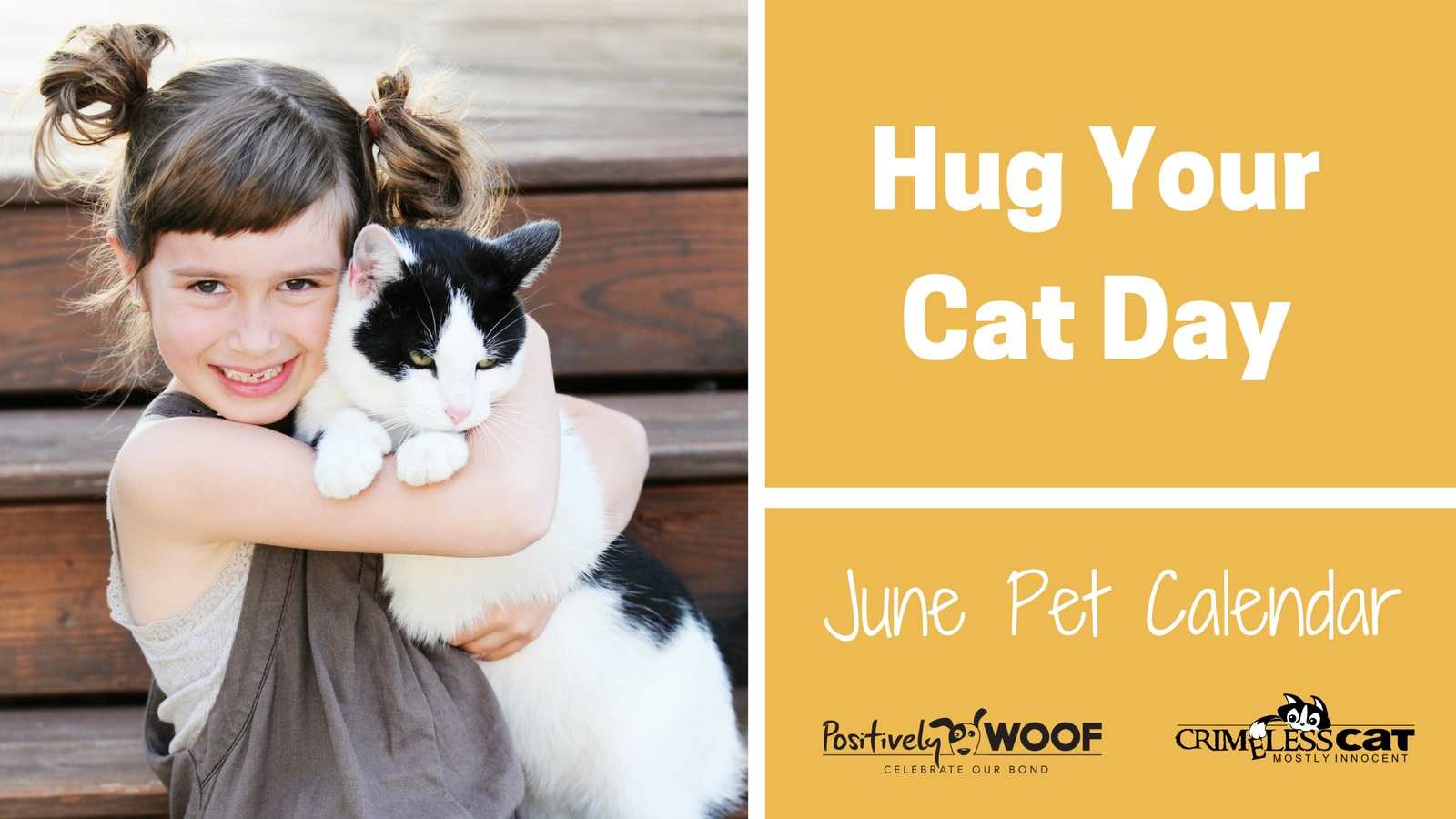 hug your cat day