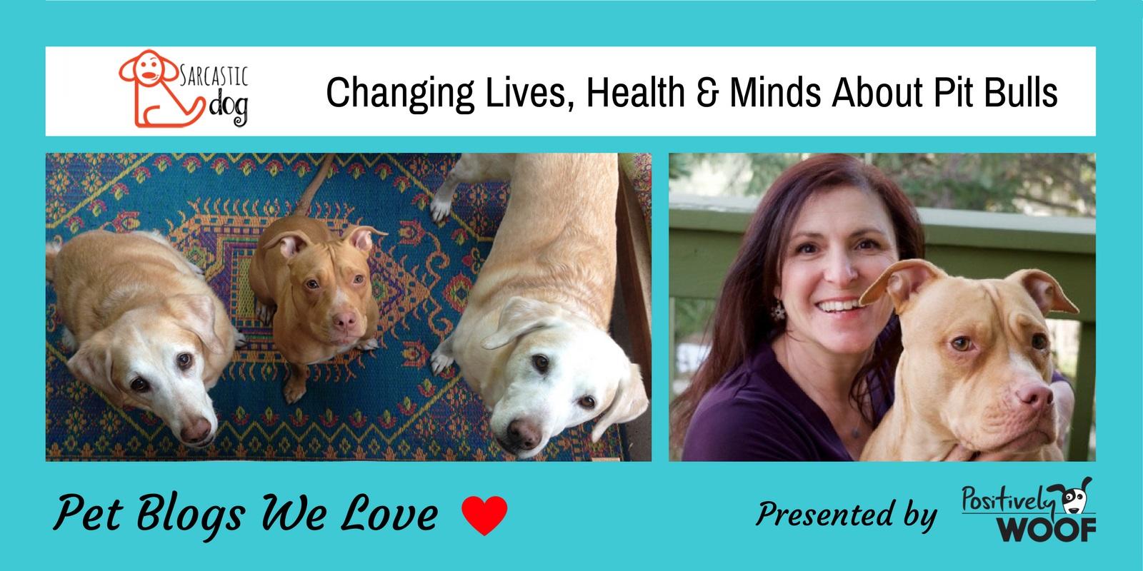 pet blogs we love