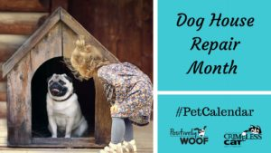 pet calendar dog house repair month