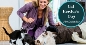 pet calendar cat herders day