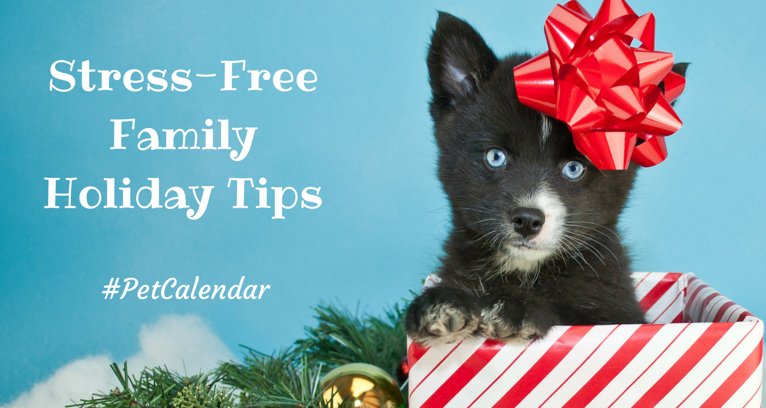 Pet Calendar stress free family holiday