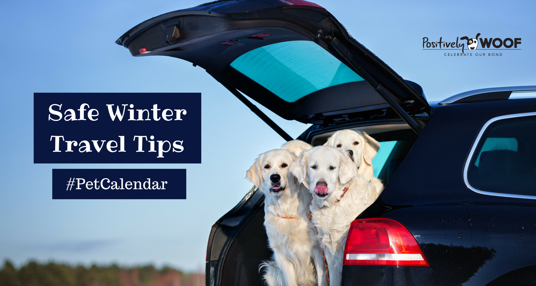 pet calendar winter travel safety tips