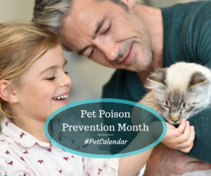 pet calendar pet poison prevention month