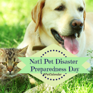 national pet disaster preparedness day pet calendar
