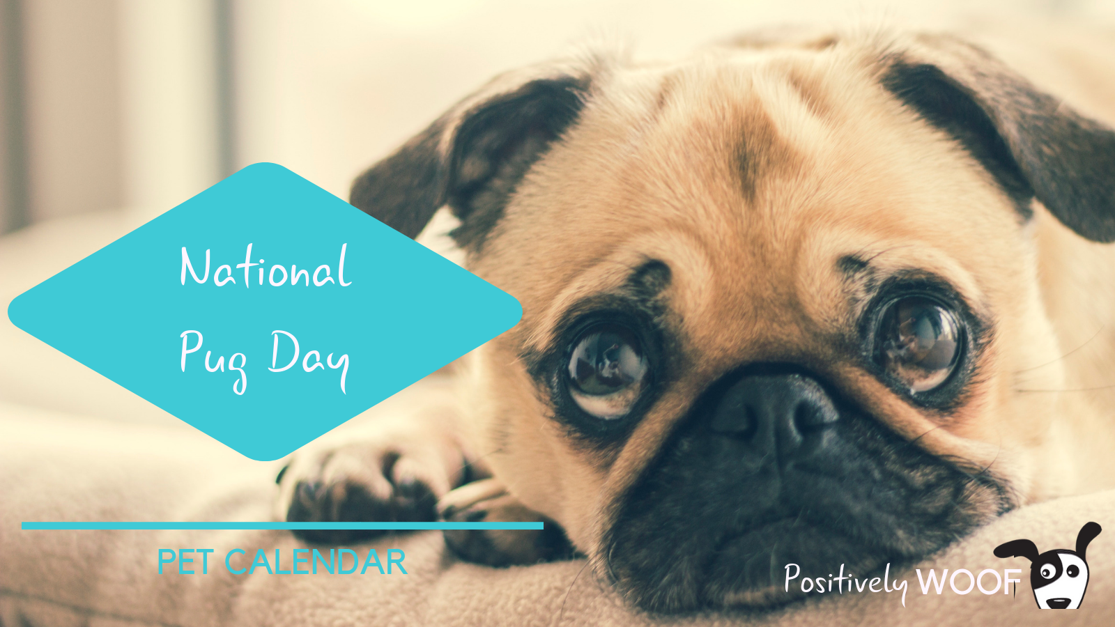 pet calendar national pug day