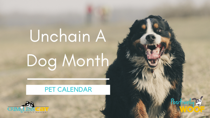 feb calendar unchain a dog month