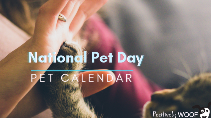 pet calendar national pet day