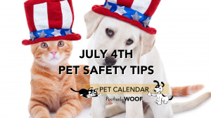 july 4 pet safety tips
