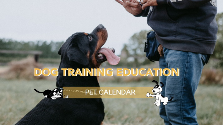 Pet Calendar: Dog Training Education Month